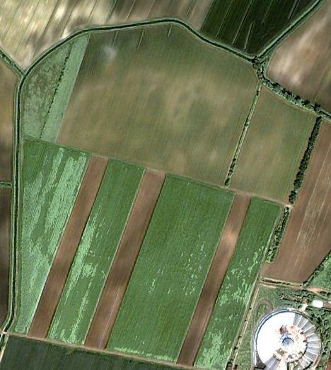 2006-05-10-jpg.jpg
