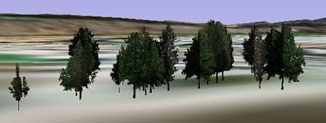 trees3dn.jpg